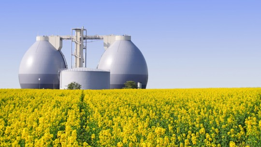 Biogas generation: turning waste into three valuable products