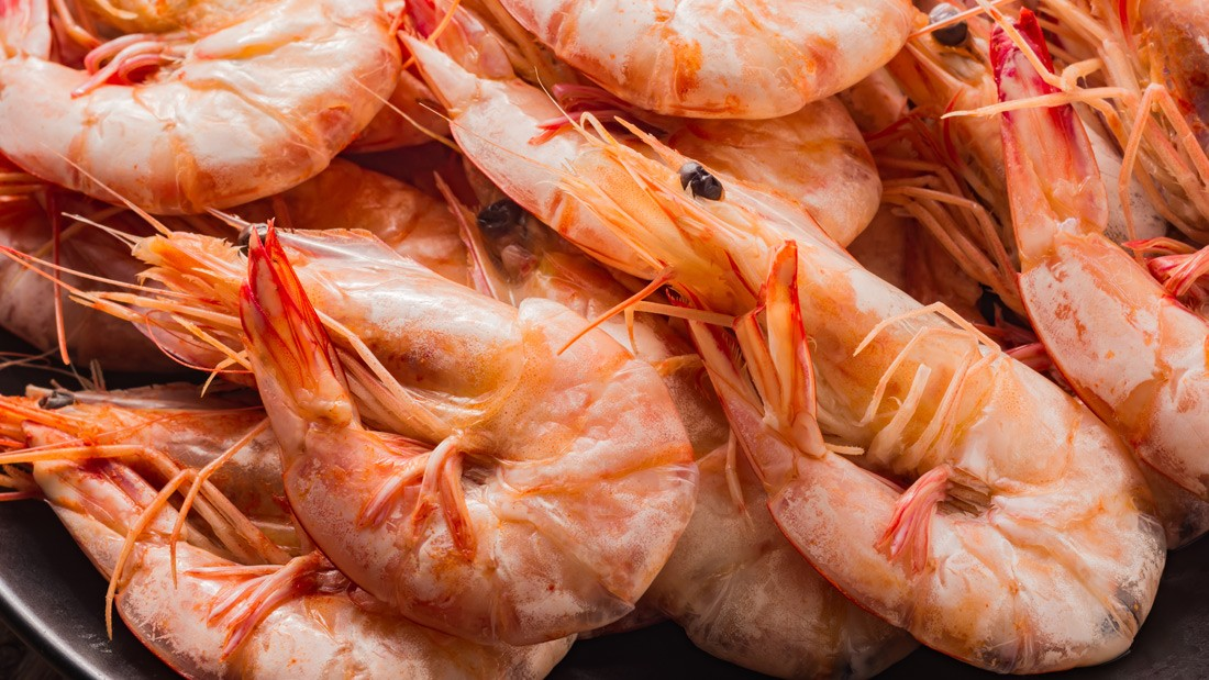 Image result for shrimp  in french guiana
